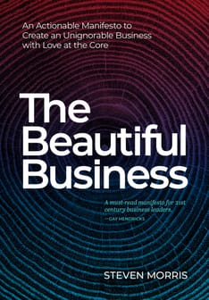 The Beautiful Business An Actionable Manifesto to Create an Unignorable Business with Love at the Core