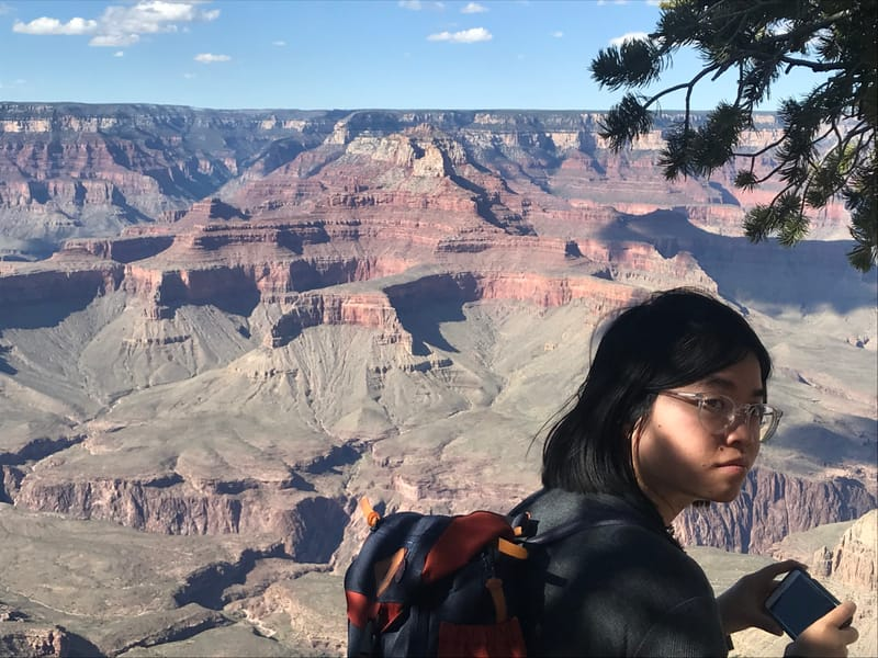 Empowered by Design Christy Bui RTC Book Designer grand Canyon